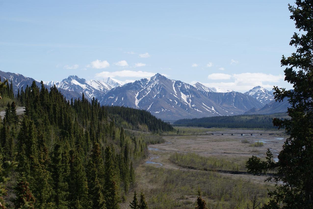 Beautiful Denali National Park.