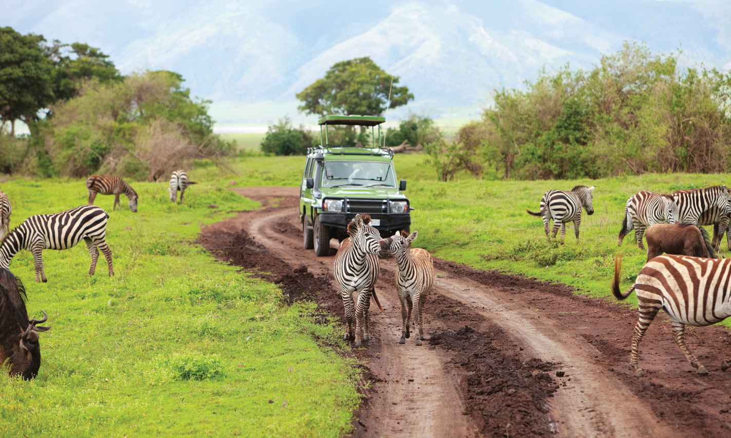 Wake Up To Your Wildest Dreams In Africa Globus Blog