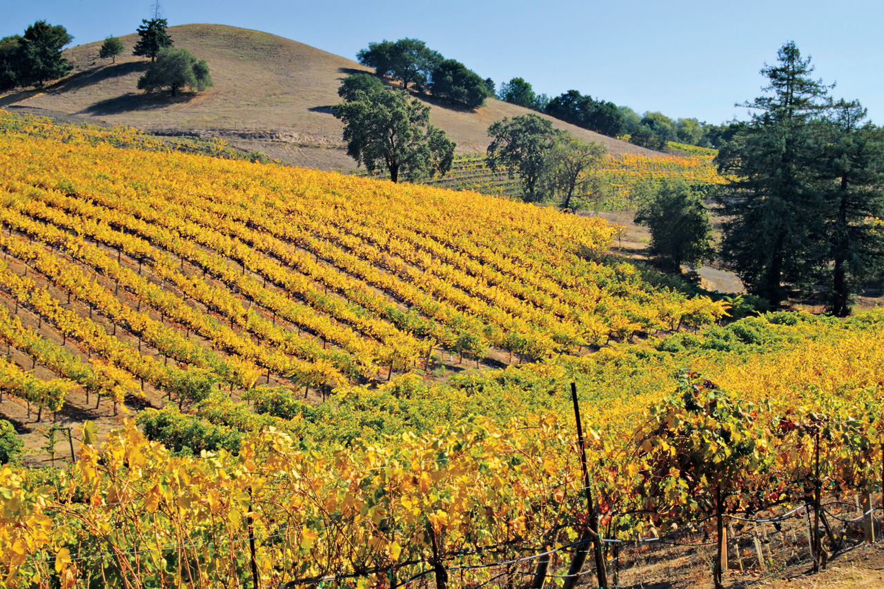 Best travel destinations for your zodiac sign globus blog for Best time to visit napa valley wine country