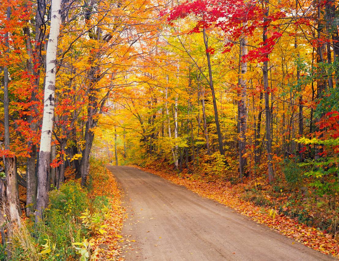 7 best fall foliage trips