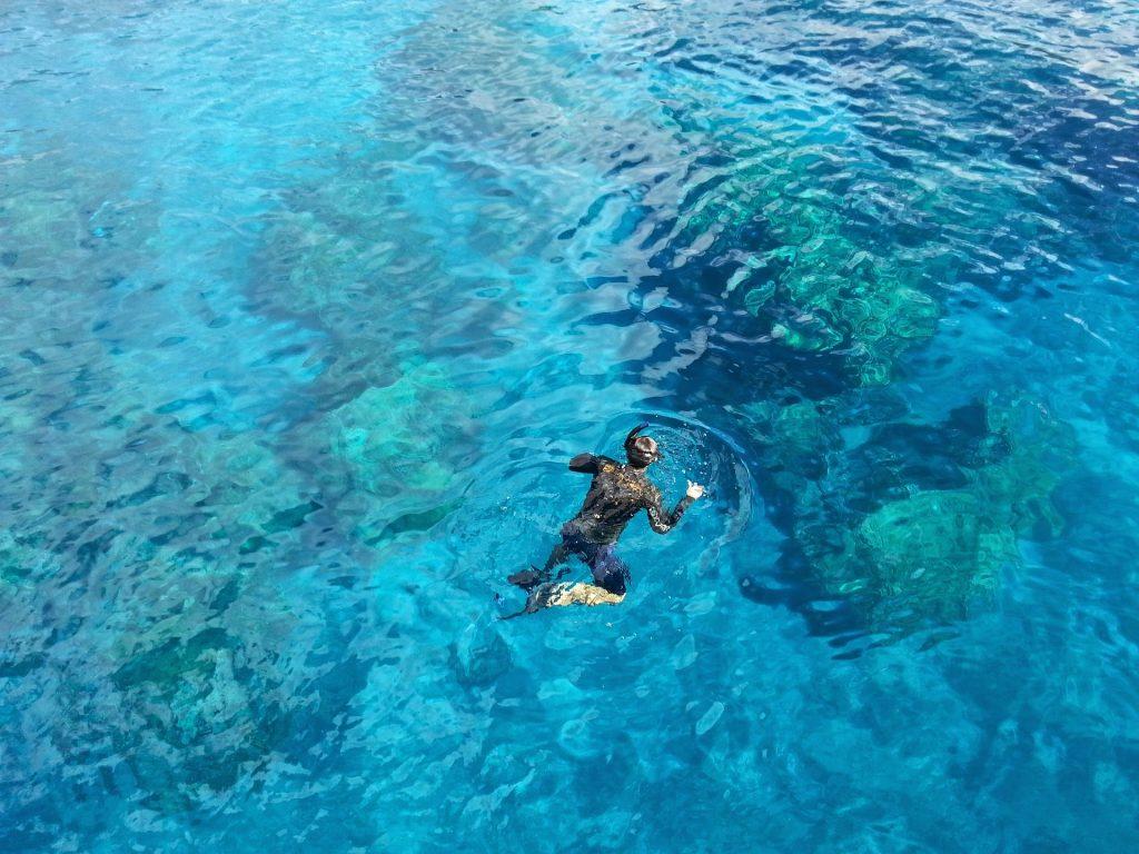snorkeling-1197011_1920